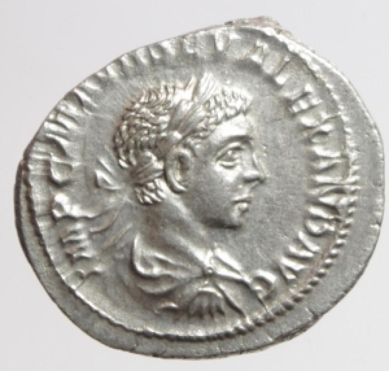 obverse: alessandro severo denario