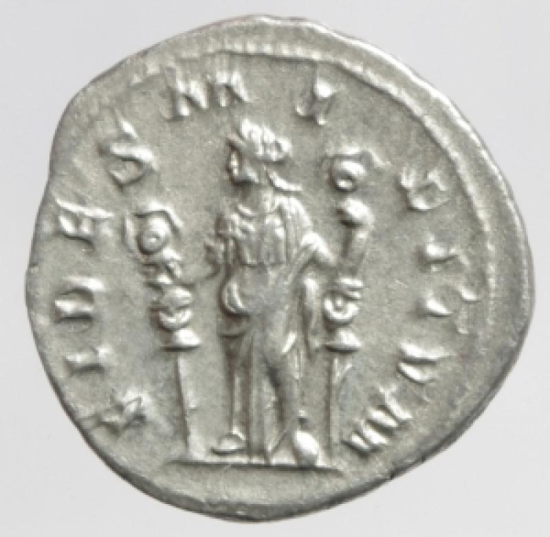reverse: massimino denario