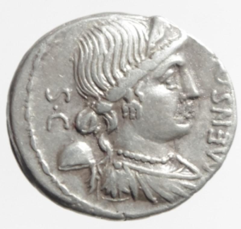 obverse: farsuleia denario