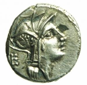 obverse: denario Junia