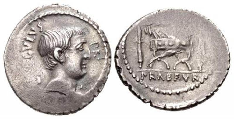obverse: livineia denario