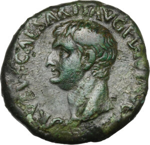 obverse: Drusus (died 23 AD).. AE As, struck under Titus, 80-81 AD
