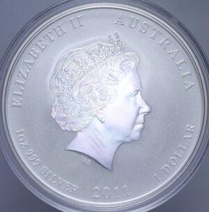 reverse: AUSTRALIA ELISABETTA II 1 DOLLARO 2011 CONIGLIO AG. 31,11 GR. PROOF