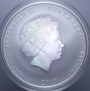 reverse: AUSTRALIA ELISABETTA II 1 DOLLARO 2019 MAIALE AG. 31,11 GR. PROOF