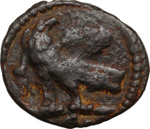 reverse: Ostrogothic Italy, Theoderic (493-526).. AE 40 Nummi, Rome mint, c. 493-518 AD