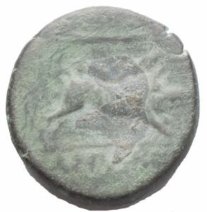 reverse: Mondo Greco - Apulia Arpi (III sec. a.C.) Obolo.D/ Testa di Zeus a sinistra.R/ Cinghiale a destra, sopra punta di freccia. AE. gr 8,9. mm 21,7.SNG ANS 635.BB++/BB. Ottimo ritratto e bella patina verde