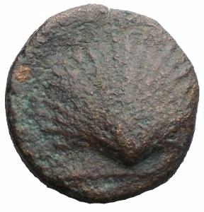 obverse: Mondo Greco -Apulia. Luceria.Biuncia ca. 211-200 a.C.D/ Testa velata di Cerere a destra.R/ Conchiglia.HN (Italy) 681.AE.g 5,58.mm 11,8. qMB