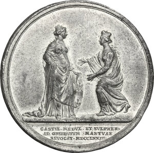 reverse: Italy .  Maria Theresia (1740-1780). WM Medal 1773 for the annexion to Mantova of the provinces of Castiglione, Medula and Solferino
