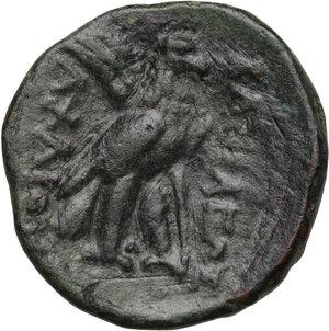 reverse: Syria, Seleucid Kings.  Achaios (Usurper, 220-214 BC). AE 18 mm. Sardes mint