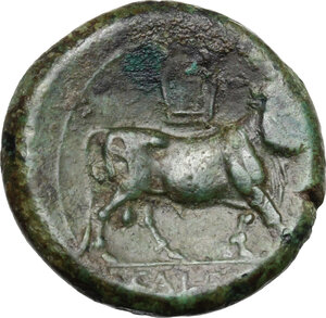 reverse: Samnium, Southern Latium and Northern Campania, Cales. AE 20 mm, 265-240 BC