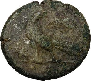 reverse: Ostrogothic Italy, Theodahad (534-536).. AE Follis. Rome mint, 5th officina. Struck 493-518