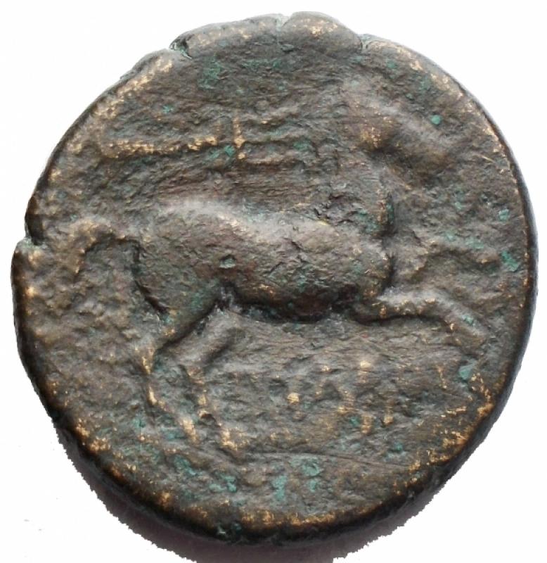 reverse: Mondo Greco -Apulia. Salapia.AE 21,4 mm. ca. 225-210 a.C.D/ Testa di Apollo a destraR/ Cavallo a destra, sopra un tridenteHN (Italy) 692.g 8,38. MB-qBB.