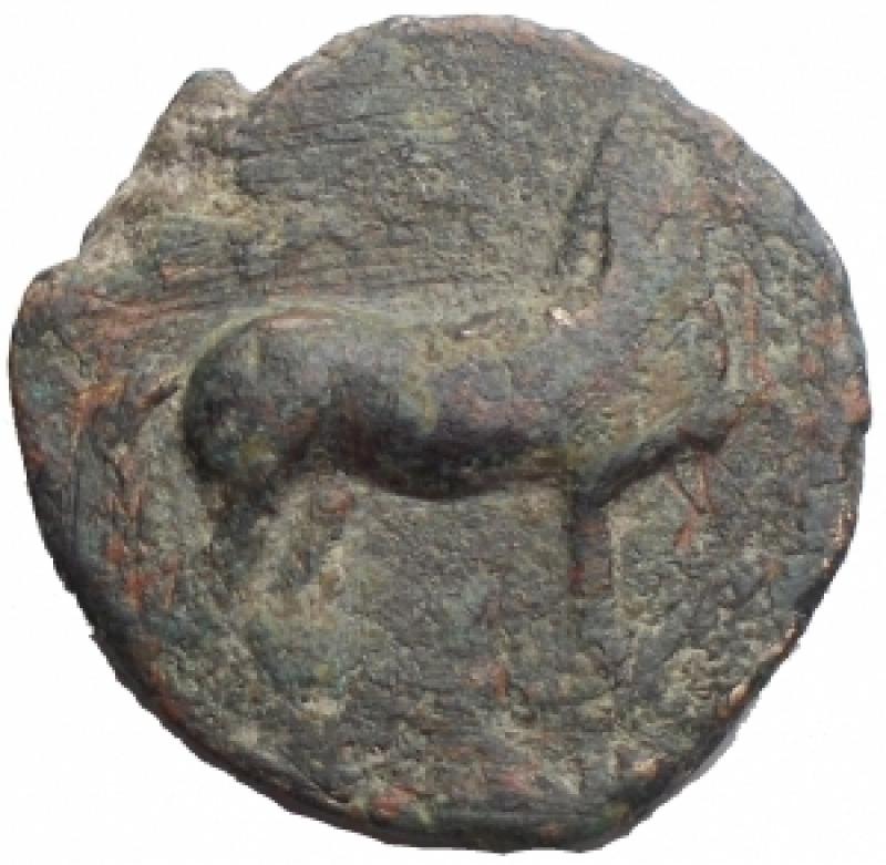 obverse: Mondo Greco - Apulia. Salapia. 275-250 a.C.AE. d/ Cavallo a destra con una zampa anteriore sollevata r/ Delfino a destra Rif SNG ANS 733. g 7,42. mm 13,34. qBB