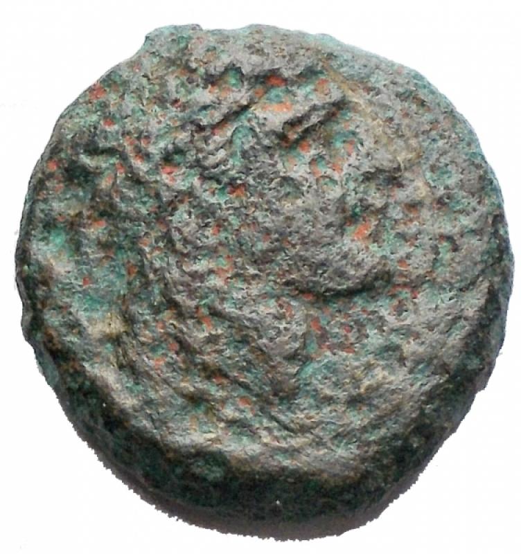 obverse: Mondo Greco - Campania. Neapolis. ca 300-275 a.C.AE. D/ Testa laureata di Apollo a destra. R/ Toro androcefalo a destra, sopra stella. Peso g 5,52. mm 16,64. MB+. R.