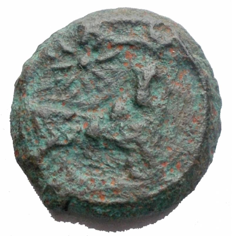 reverse: Mondo Greco - Campania. Neapolis. ca 300-275 a.C.AE. D/ Testa laureata di Apollo a destra. R/ Toro androcefalo a destra, sopra stella. Peso g 5,52. mm 16,64. MB+. R.
