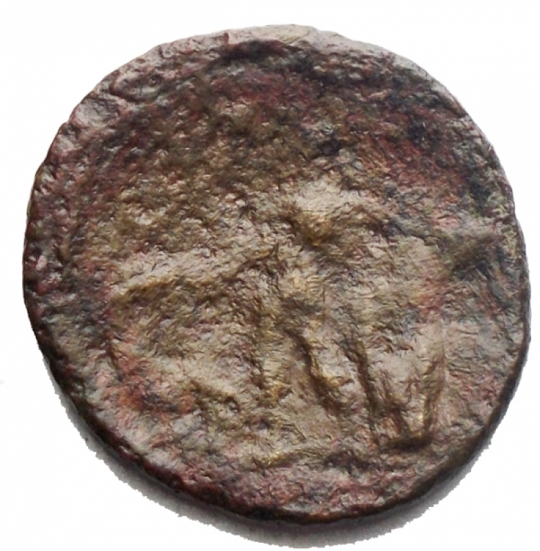 reverse: Mondo Greco - Sicilia. Alaesa. Dopo il 241 a.C.Ae. D/ Testa di Apollo verso sinistra. R/ Apollo in piedi a sinistra. SNG ANS 1185. Peso 3,3 gr. Diametro 19,15 mm. MB-qBB/MB+.R.