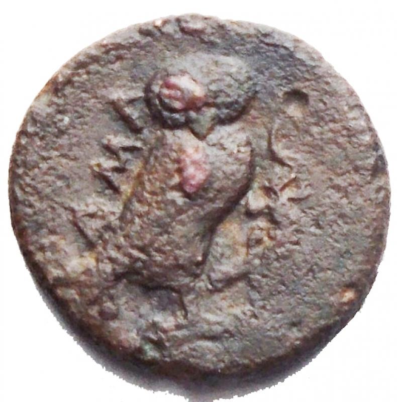 reverse: Mondo Greco - Sicilia. Camarina. Ae oncia. 425-405 aC. g 1,16. MB-qBB