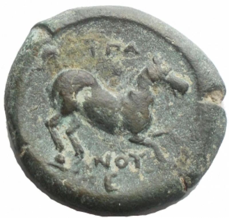 obverse: Mondo Greco - Apulia Arpi(Circa 275-250 a.C.)AE 20,5 x 19,8 mm.D/ Toro cozzante a destra. R/ Cavallo al galoppo a destra. 8,01 gr.HN Italy 645.BB+. Patina verde