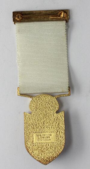 reverse: Massoneria inglese. Royal Masonic Institution for Girls. Medaglia con nastrino e fascetta STEWARD 1976
