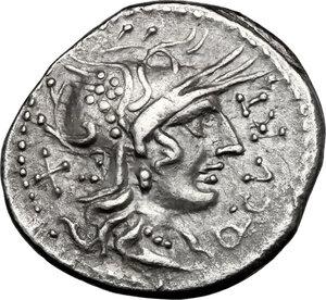 obverse: Q. Curtius.AR Denarius, 116-115 BC