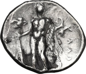 reverse: Southern Lucania, Heraclea. AR Stater, c. 281-278 BC
