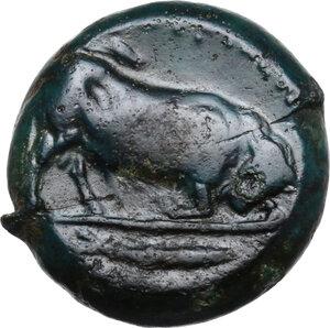 reverse: Southern Lucania, Thurium. AE Diobol, c. 325-300 BC