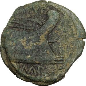 reverse: Sextus Pompeius Magnus Pius.AE As, c. 42-38 BC. Sicily
