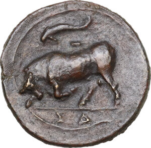 reverse: Syracuse. Agathokles (317-289 BC).AE 16mm., 317-310 BC