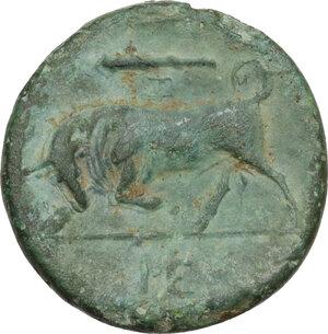 reverse: Syracuse. Hieron II (274-215 BC).AE 18.5mm, 275-269/265 BC