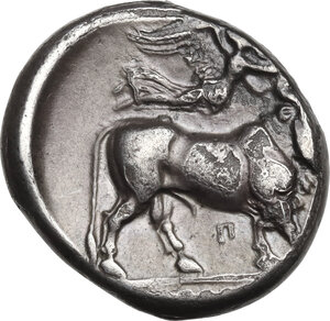 reverse: Central and Southern Campania, Neapolis. AR Didrachm, c. 320-300 BC