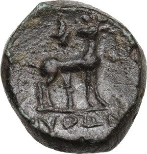 reverse: Ionia, Ephesos. AE 14 mm. Civic issue. Python, Magistrate, c. 50-27 B.C