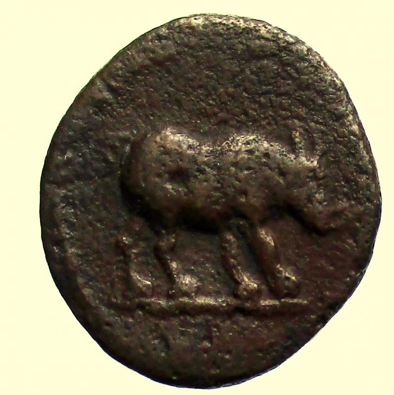 obverse: Impero. Domiziano. 81-96 d.C. Quadrante