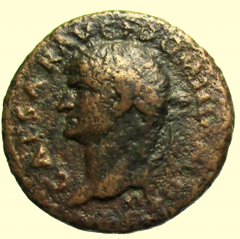 obverse: Impero Romano. Domiziano. 81-96 d.C. Asse. Ae.