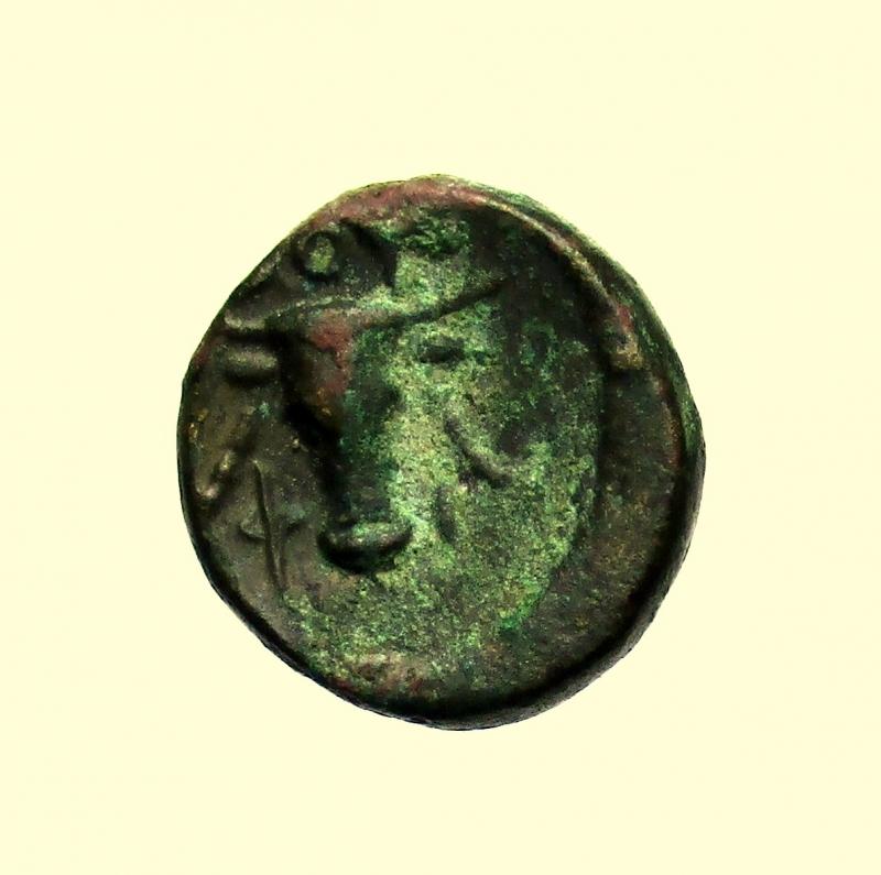 reverse: Mondo Greco. Lucania, Thourioi dopo il 300  a.C.