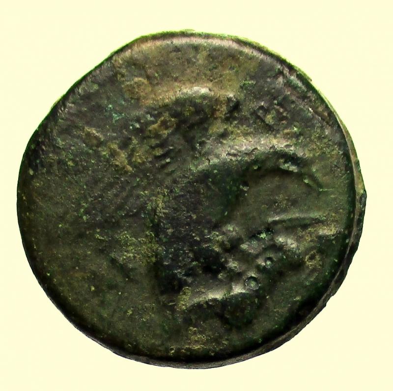 obverse: Mondo Greco Akragas. Tetras, 425-406 a.C.