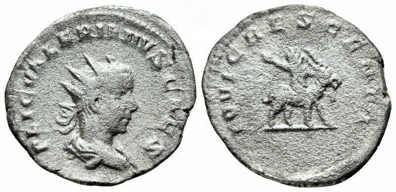 obverse: Impero Romano. Valeriano II Cesare 256-257 d.C. Antoniniano.