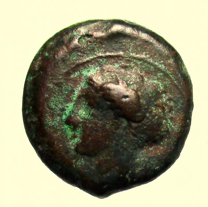 obverse: Mondo Greco Sicilia. Siracusa. ca 410 a.C. Ae.