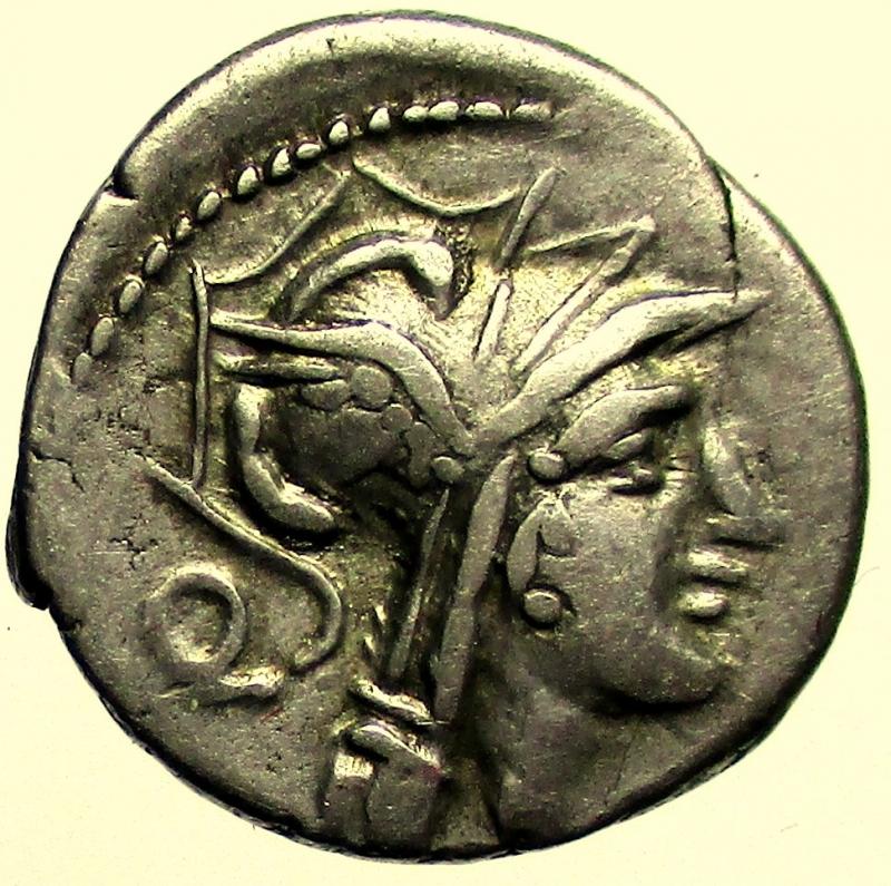 obverse: Repubblica Romana - Gens Junia. D Junius Silanus LF. 91 a.C. Denario.