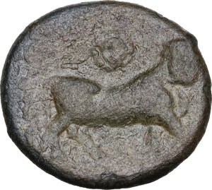 reverse: Central and Southern Campania, Neapolis. AE 16.5 mm, 300-275 BC
