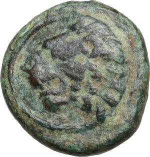 obverse: Thrace, Chersonesos. AE 12 mm. Circa 386-309 BC