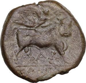 reverse: Samnium, Southern Latium and Northern Campania, Cales. AE 20.5 mm, circa 265-240 BC
