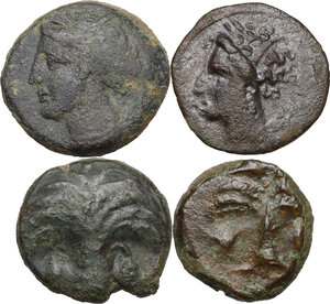 obverse: Punic Sardinia and Punic Sicily.. Lot of four (4) unclassifed AE denominations, 3rd century BC