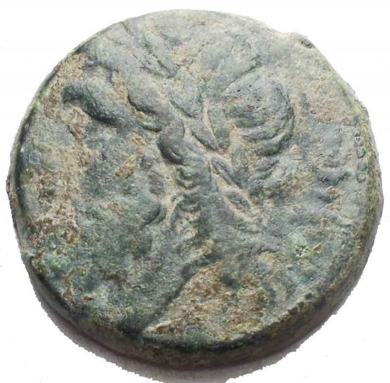 obverse: Mondo Greco - Apulia Arpi (III sec. a.C.) Obolo.D/ Testa di Zeus a sinistra.R/ Cinghiale a destra, sopra punta di freccia. Gr. 6,8. AE.SNG ANS 635.BB+/BB.Bella patina verde