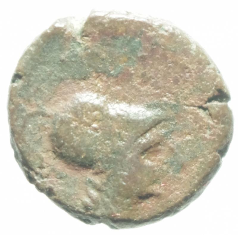obverse: Mondo Greco. Apulia. Arpi. III sec. a.C. AE 14. D/ Testa di Athena con elmo corinzio a destra. R/ APANOY. Grappolo d uva. SNG ANS 646. Peso gr. 3.75. Diametro 16,00 mm. Bel BB. Patina Rossa.