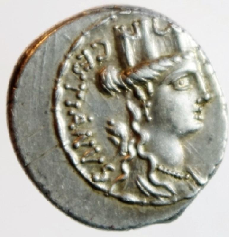 obverse: Repubblica Romana. Gens Plaetoria. Marcus Plaetorius Cestianus. 67 a.C. Denario. Ag. D/ CESTIANVS Testa di Cibele verso destra, davanti un globo, dietro un muso di leone. R/ M PLAETORIVS AED CVR EX SC (Marcus Plaetorius, aedilis curulis, ex senatus consulto) sedie curuli, nel campo un simbolo. Cr.409/2. Peso 3,92 gr. Diametro 21,00 mm. Decentrata altrimenti. SPL+. Patina. NC.