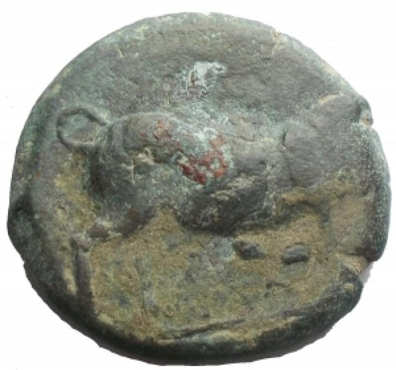 reverse: Mondo Greco - Apulia Arpi(Circa 275-250 a.C.)AE 20,5 x 19,8 mm.D/ Toro cozzante a destra. R/ Cavallo al galoppo a destra. 8,01 gr.HN Italy 645.BB+. Patina verde