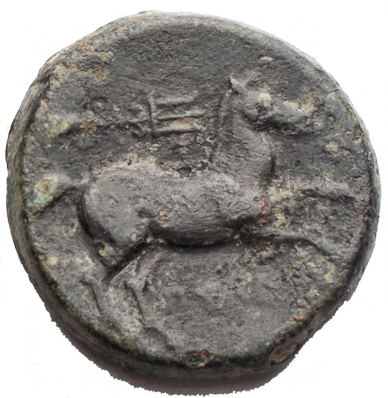 reverse: Mondo Greco - Apulia Salapia. 300-225 a.C.Bronzo. D/ Testa laureata di Apollo verso destra. R/ Cavallo verso destra sopra tridente. Peso 9,73 gr. Diametro 21,02 x 21,2 mm. SNG ANS 733. BuonBB+.Buona centratura. Patina verde nera