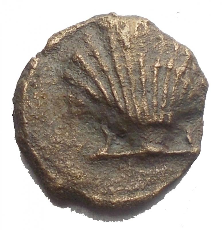 obverse: Mondo Greco -Calabria, Taranto.AE. ca. 275-200 a.C.D/ Conchiglia.R/ Taras su delfino a sinistra tiene cantharus e cornucopia.SNG Cop 1085. HN Italy 1087.AE.g 1.75.mm 12,9 x 13,3.qBB.
