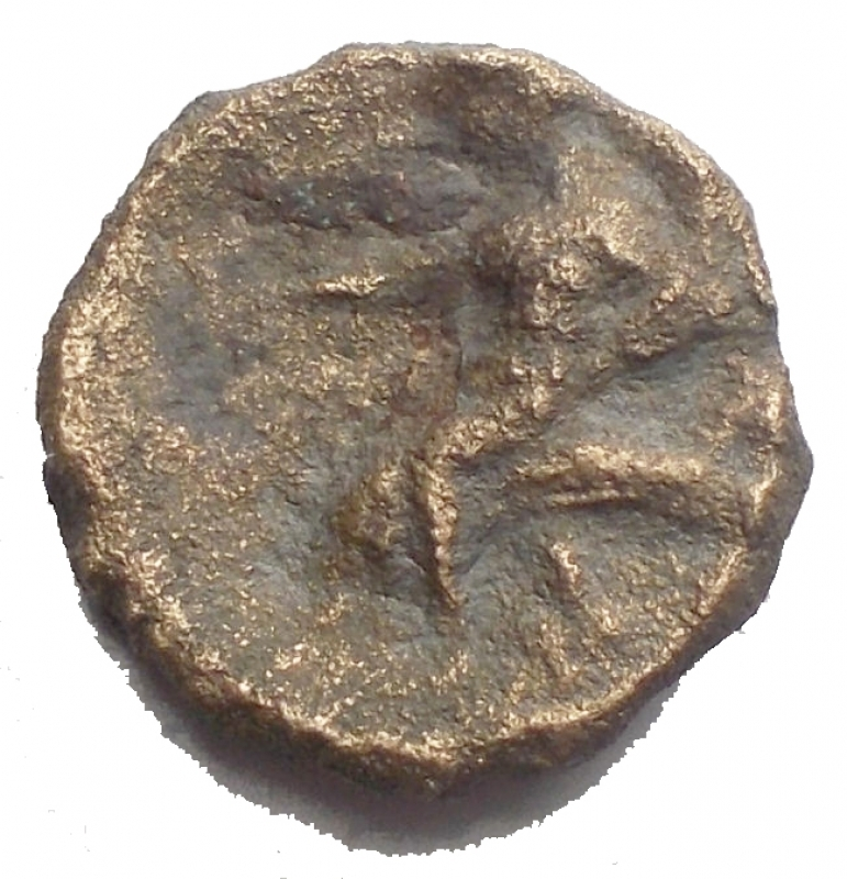 reverse: Mondo Greco -Calabria, Taranto.AE. ca. 275-200 a.C.D/ Conchiglia.R/ Taras su delfino a sinistra tiene cantharus e cornucopia.SNG Cop 1085. HN Italy 1087.AE.g 1.75.mm 12,9 x 13,3.qBB.