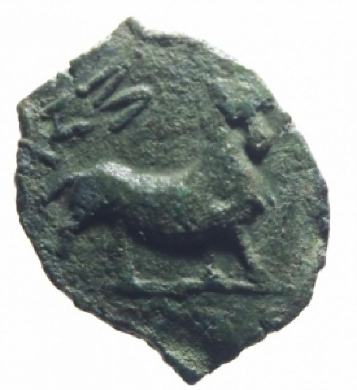 reverse: Monete Celtiche. Gallia Narbonese. Massalia. 121 -49 Sec. a.C. Ae. D/ Testa di Apollo a destra. R/ Toro cozzante verso destra MA. Peso 2,55 gr. Diametro 13,00 mm. BB.